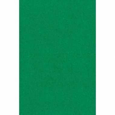 Papieren tafelkleden/tafellakens decoratie groen 137 x 274 cm